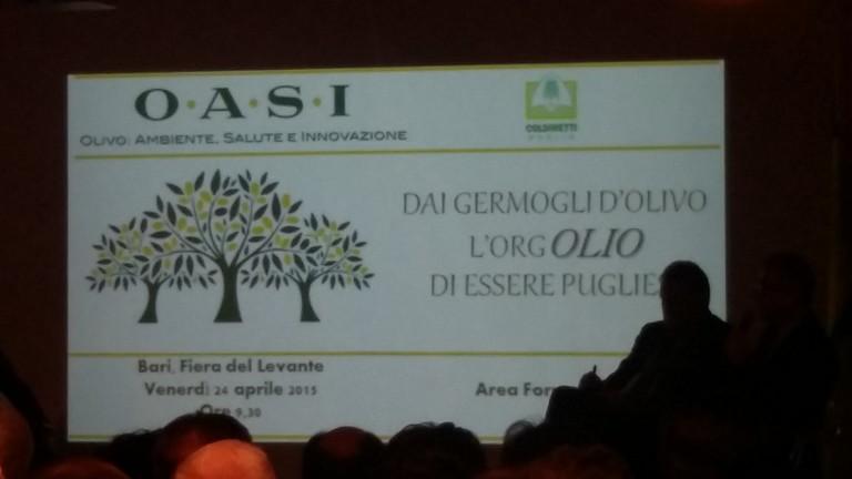 OASI: prima fiera sull'olio bio, sull'ulivo e sulla sua filiera