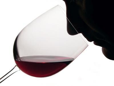 """App """"My Sommelier"""": l'applicazione per gli amanti del buon vino"""