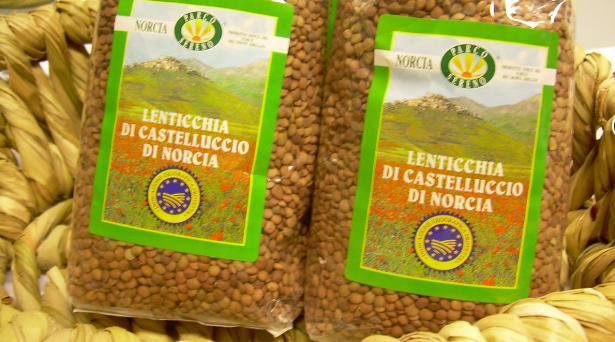 Lenticchie di Castelluccio di Norcia IGP: attesa per la prossima fioritura