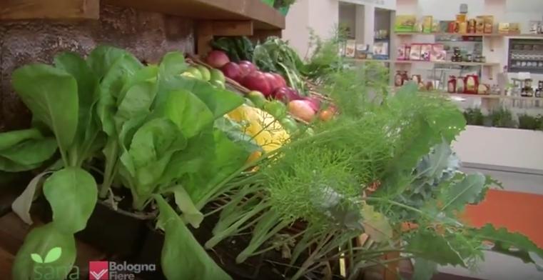 Prodotti tipici e aziende bio in Emilia Romagna