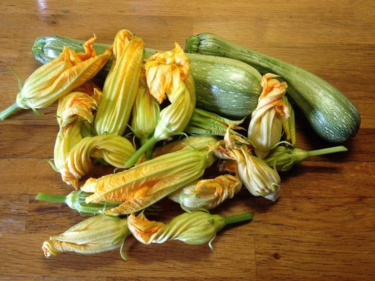 I fiori di zucca nella cucina tradizionale